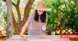 5 affordable home improvement ideas for summer 2021