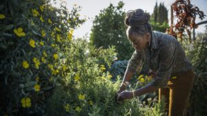 """""""Dirt has no life in it. Soil is full of life. In one teaspoon of soil, you can have millions of microbes present. … Compost is a really great way to amend [dirt], but I always go with sheet mulching, especially if you have the space for it,"""" says Tashanda Giles-Jones."""